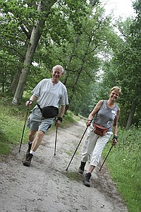 comp 3Nordic Walking